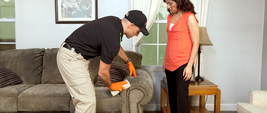 Rapid City, SD carpet upholstery cleaning